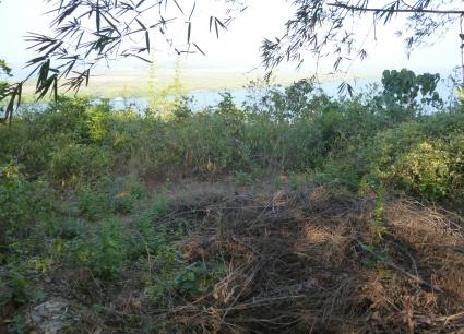 Plot For Sale At Kadamba Plateau Goa Properties Real